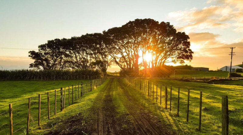 Lijst van plattelandstoerisme en -recreatie